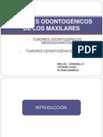 Tumores Odontogenicos de Los Maxilares Final