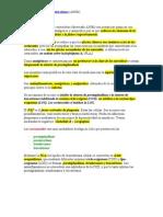 Antiinflamatorios No Esteroideos AINEs