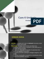 Curs 6 Urologie
