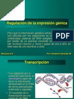 5 Regulacion Expre Genet