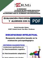 176580874 Evaluacion Psicopedagogica y Los ACNEEs David Gonzalez PDF