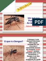 Palestra Sobre Dengue 2
