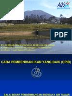 Materi Cpib (Adang.s)