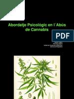 La Medicina Al Teu Abast-novbre 2012