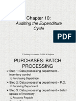Ch10_Auditing Expenditure Cycle