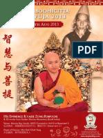 Zong Rinpoche 2013