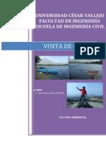 99381893 Informe de Cultura Ambiental Conache