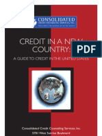 Credit in the US