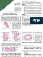 Histologi Sistem Pernafasan-kecil