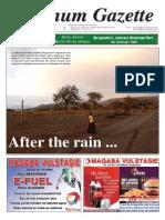 Platinum Gazette 22 November 2013