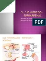 El Eje Hipófiso-Suprarrenal
