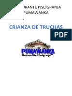 Latrucha 131010185356 Phpapp02.Docx INGENIERIA