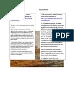 Ficha de Citas Sintesis Nacho Balzarini 33