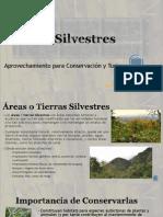 Conservación y Turismo en Áreas Silvestres