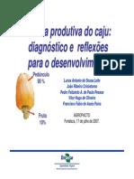 CadeiaProdutivaDoCaju_Agropacto