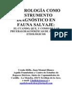 Serologia_UHofle