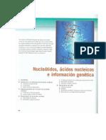 Voet Et Al 2007-Acidos Nucleicos
