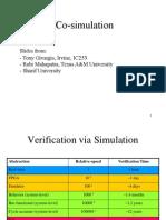 Co Simulation