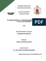 ELAMPAROAGRARIOYLANECESARIAREFORMAALARTICULO217DELALEYDEAMPARO.pdf