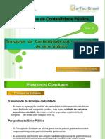 PRINCIPIOS CONTABEIS
