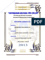 Informe Gerencial