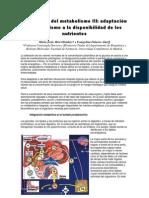 Integración del metabolismo III