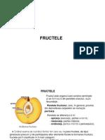 CURS 5 Bis FRUCTE Carnoase Arte (1)
