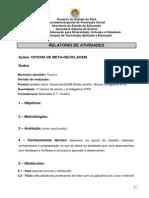 Relatorio Atividade Gp Para - 2013
