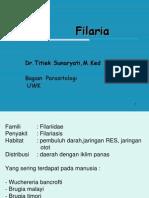 Filaria (1)