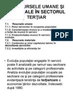 Curs7 Economia serviciilor