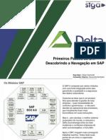 Primeiros Passos Do SAP