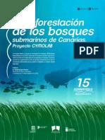 La reforestación de los bosques submarinos de Canarias. Proyecto CYMOLAB
