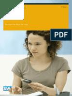 Gestión de flujo de caja SAP
