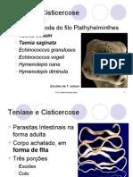 160164_Teníase e Cisticercose