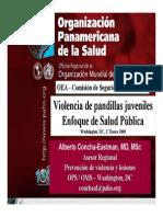 presentacionOPS-OEA-pandillas