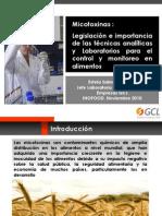 12 Estela Salinas - Empresas Gcl Fundacion Chile