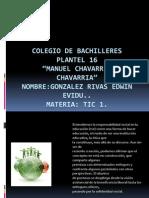 184350760-Benjamin-Fernandez-Becerril.pps