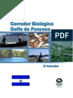 Corred or Biologic o Golfo Salvador