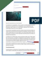 estructura fisica y logica de la pc