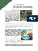 Semana 06 - Que es un ecosistema.docx