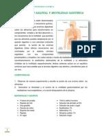 Digestion Salival - Motilidad Gastrica