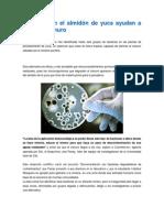 Bacterias en el almidón de yuca ayudan a eliminar cianuro.docx