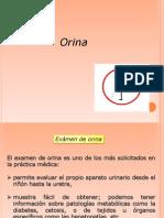 Orina.ppt