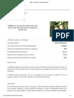 Melon - Como Cultivar _ El Huerto de Urbano