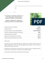 Pepino - Como Cultivar _ El Huerto de Urbano