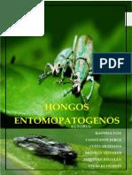 HONGOS ENTOMOPATÓGENOS(libro klyslerts)