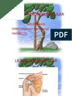 LUXACION ACROMICLAVICULAR (1)