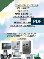 Market Plan For Consumer Durable Goods