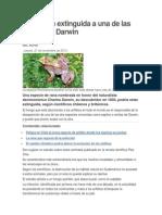 Presumen Extinguida a Una de Las Ranitas de Darwin