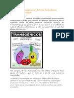 Qué son los transgénicos
